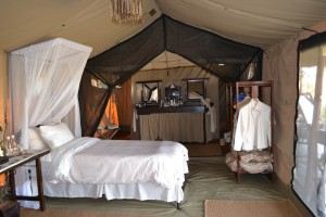 Fish Eagle Camp 1