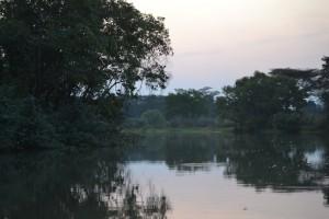 Malagarasi River