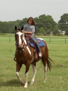 Taylor 2008